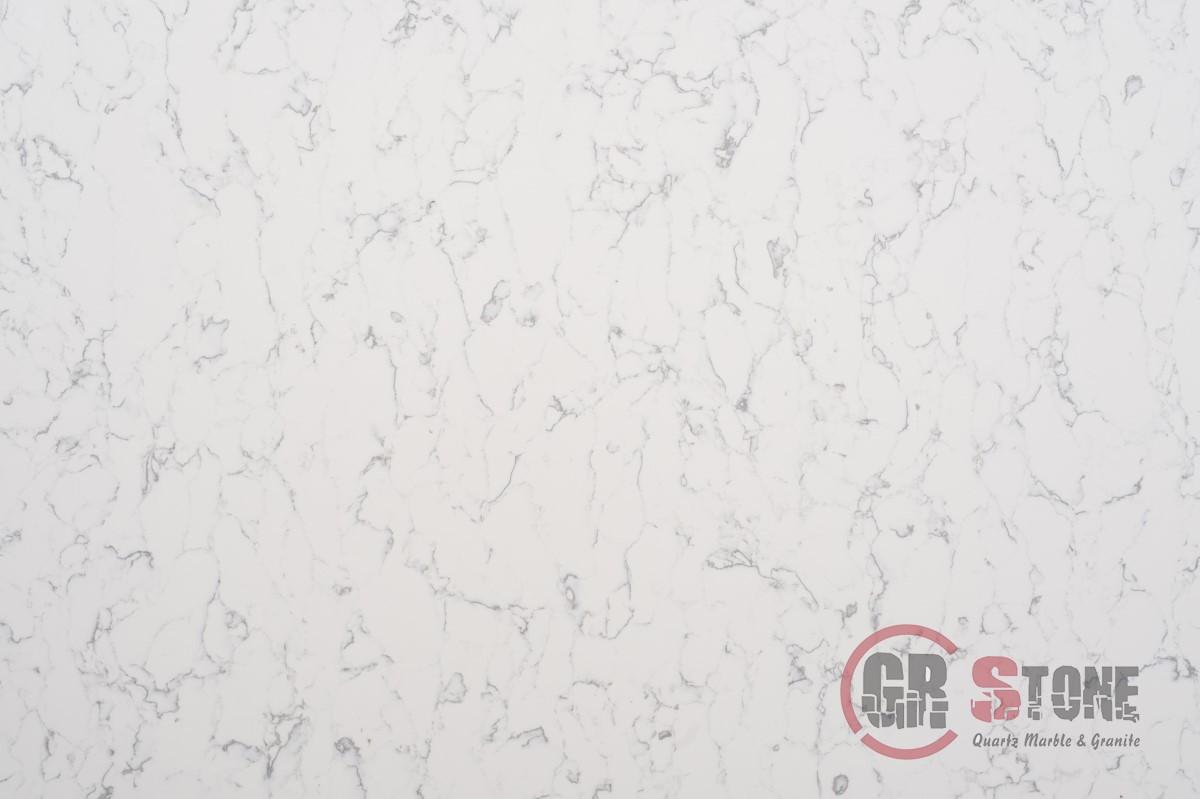 Carrara-Olympus-Close-Up-1